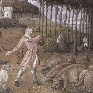 Histoire  フランスのシャルキュトリの歴史